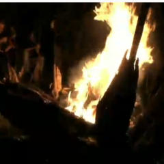 fuego-pirineo